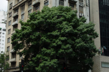 Edifício Dumont-Adams