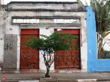 Salão Comercial – Rua Maria Cândida, 492
