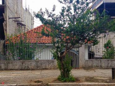 Casa – Avenida Conceição, 2351