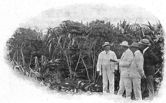 Coronel Schmidt acompanha autoridades federais em uma de suas fazendas (clique para ampliar).
