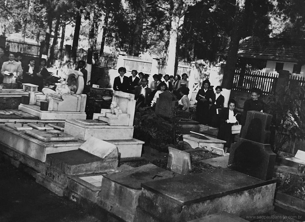cemiteriodeanimais1