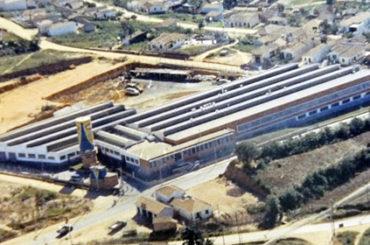 Rayovac (Microlite)