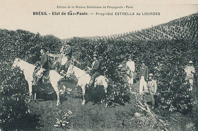 Em postal produzido na França, uma fazenda paulista de café