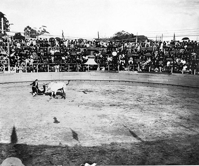 Uma das raríssimas fotos de touradas em São Paulo, ocorrida em 1902 (foto: Instituto Moreira Salles)