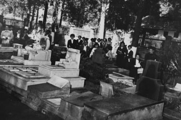 Hospital e Cemitério de Animais no Ibirapuera